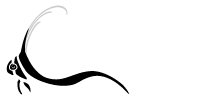 Dive and Travel Adventures Mobile Logo