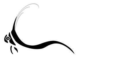 Dive and Travel Adventures Mobile Retina Logo